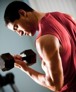 Best-Way-to-Build-Muscle-Fast