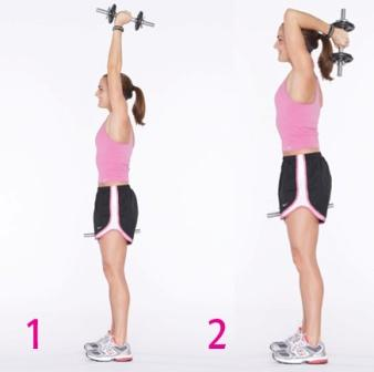 bicep and tricep curls build muscle in your arms  fitness