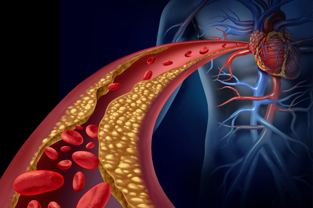 vitamins that help to boost blood flow and circulation